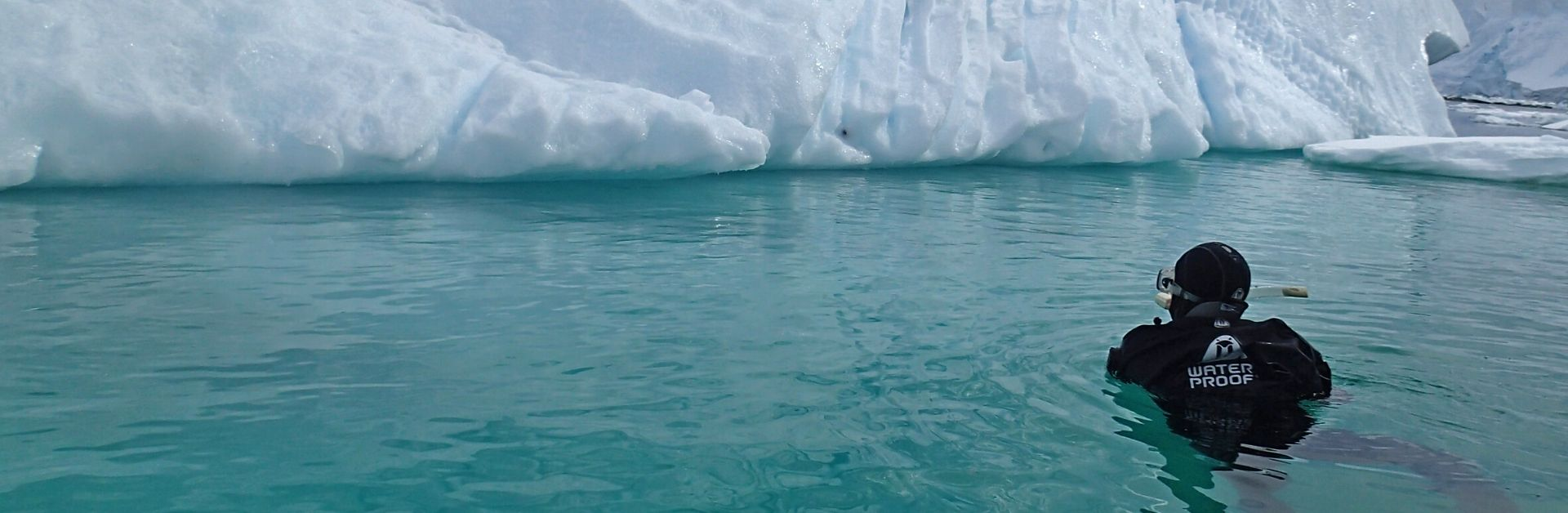 Polar snorkling Antarctica