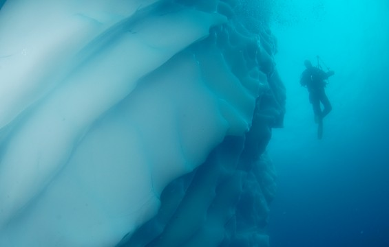 Preparing for Polar Diving