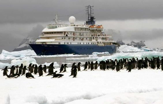 Antarctica Last Minutes 2019