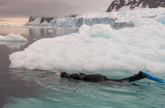 Practical and safe Polar Snorkeling