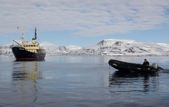 Small ship expedition cruises