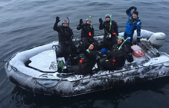 Let's go Polar Snorkeling