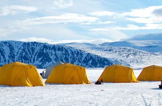 Arctic Safari Camp